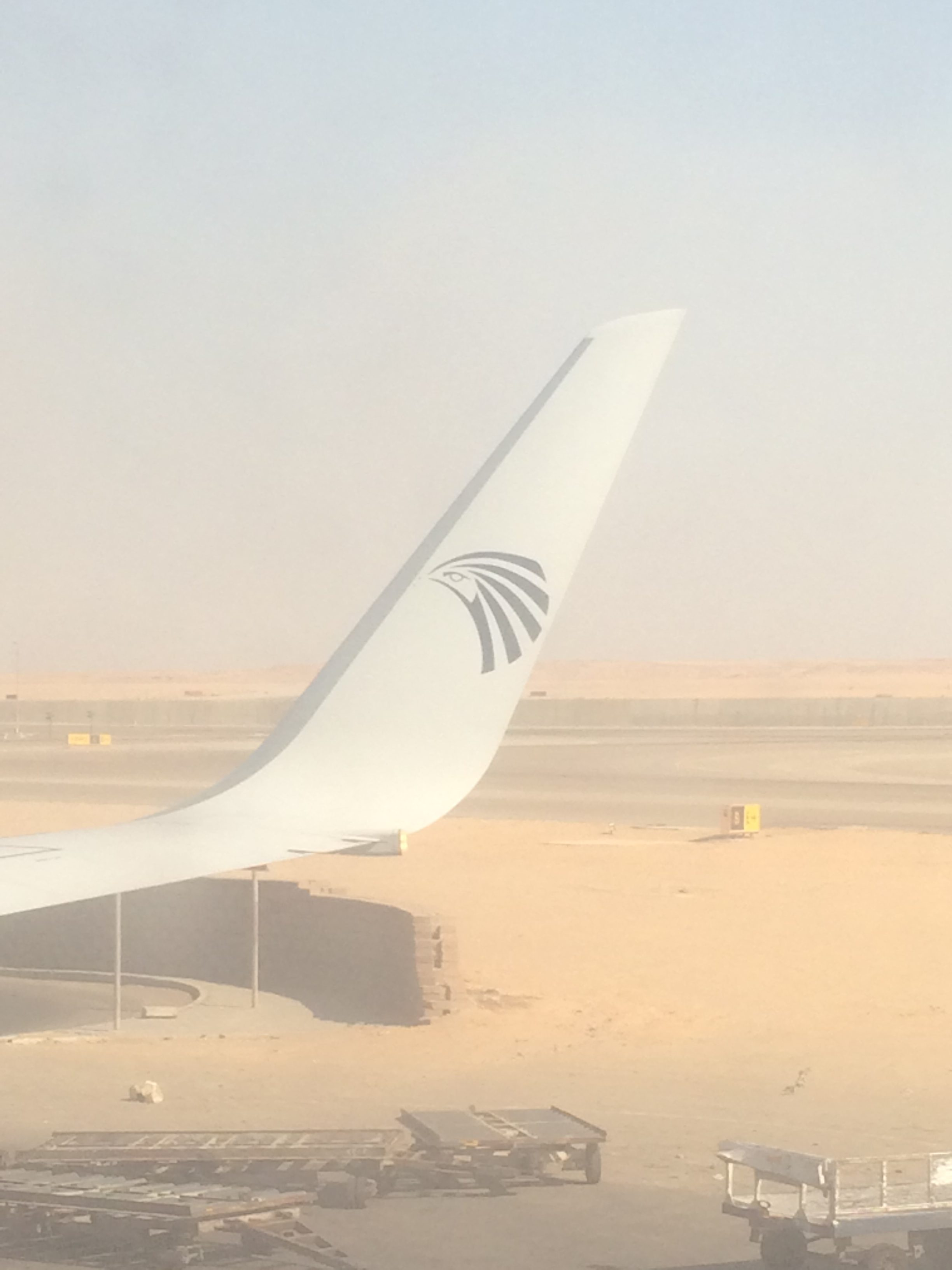 tail of an EgyptAir plane